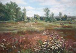 Barbara Reich - Field of Pheasants
