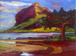 Georgie Rey - The Morne Mountain, Black River, Mauritius