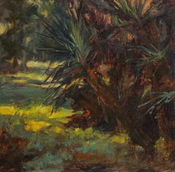 Pat Carney - Tropical Light