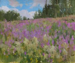 Alexander Zimin - A Field