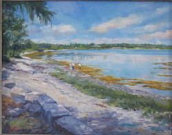 Dee Burdick - Near Bar Harbor