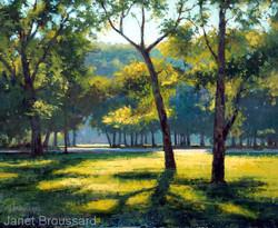 Janet Broussard - Morning Illuminated