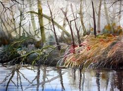 Claudia Artzmann - Canal Beside the River Thur