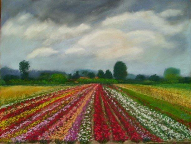 Ute Farr - Rose Field