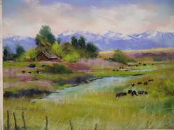 Bonnie Zahn Griffith - Wallowa County Color of Money (plein air)