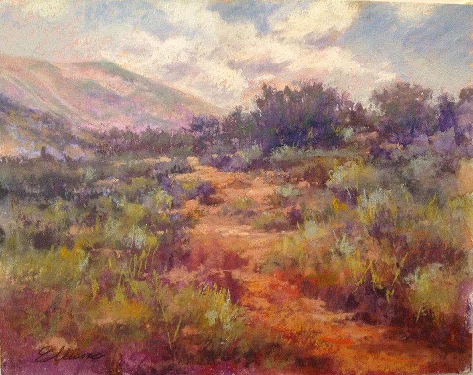 Janis Ellison - Desert Stroll