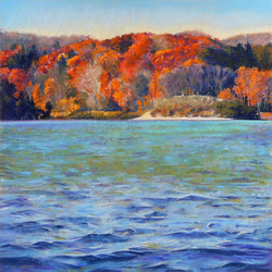 Clarence A. Porter - Walk in Cootes Paradise X