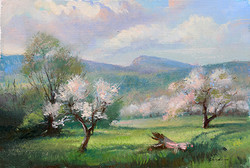 Keith Gunderson - Apple Blossoms