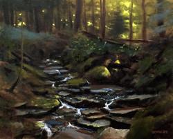 Bruce Newman - Evening on Phyllis Creek