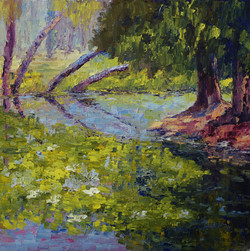 Terry Chacon - Tree Reflections