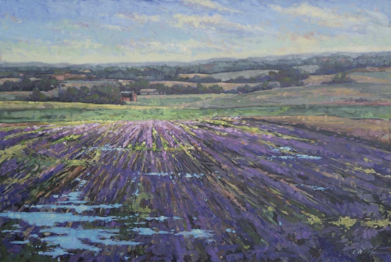 Chris Willey - March Purple Fields