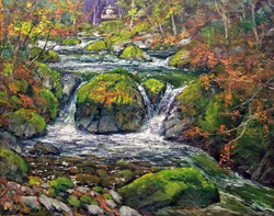 Donald Neff - Kanba Creek