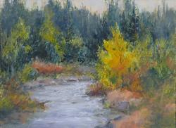 Pat Carney - Autumn Creek