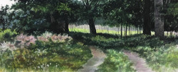 Vic Roschkov - Nature's Garden
