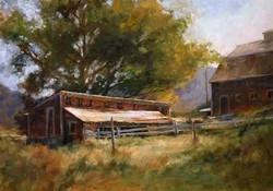 Susan Blackwood - The Chicken Coop