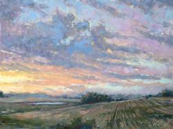 Chris Willey - Sunrise