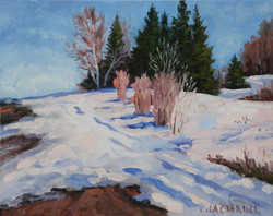Cathy Lachance - Path in the Snow