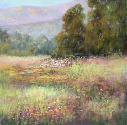 Sherri Cassell - Carpinteria Bluffs Spring