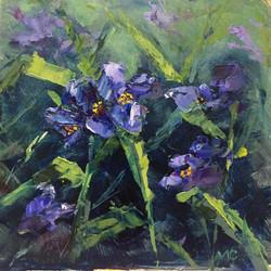 Maggie Capettini - June Spiderwort