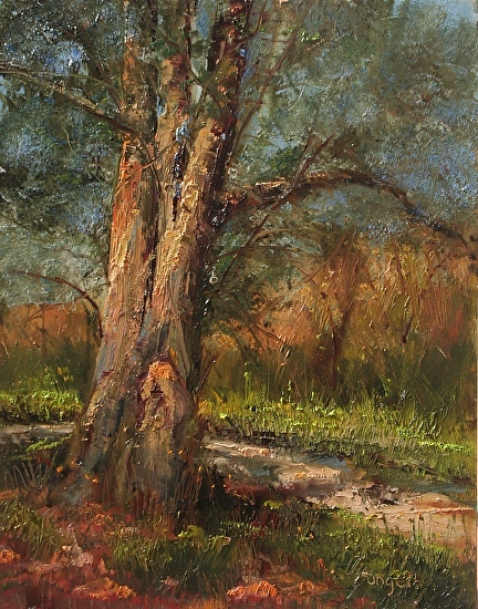 JoAnne Wood Unger - Tree Forms in Light