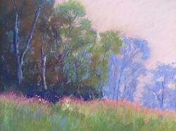 Jacquelyn Blue - Distant Trees