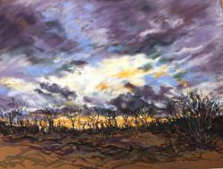 Kerry Nowak - Seeking Warmth in Winter Skies