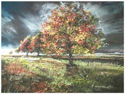 Monika Niżyńska - Autumn in Poland
