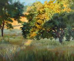 Nancy Paris Pruden - Morning Light in the Hill Country 2