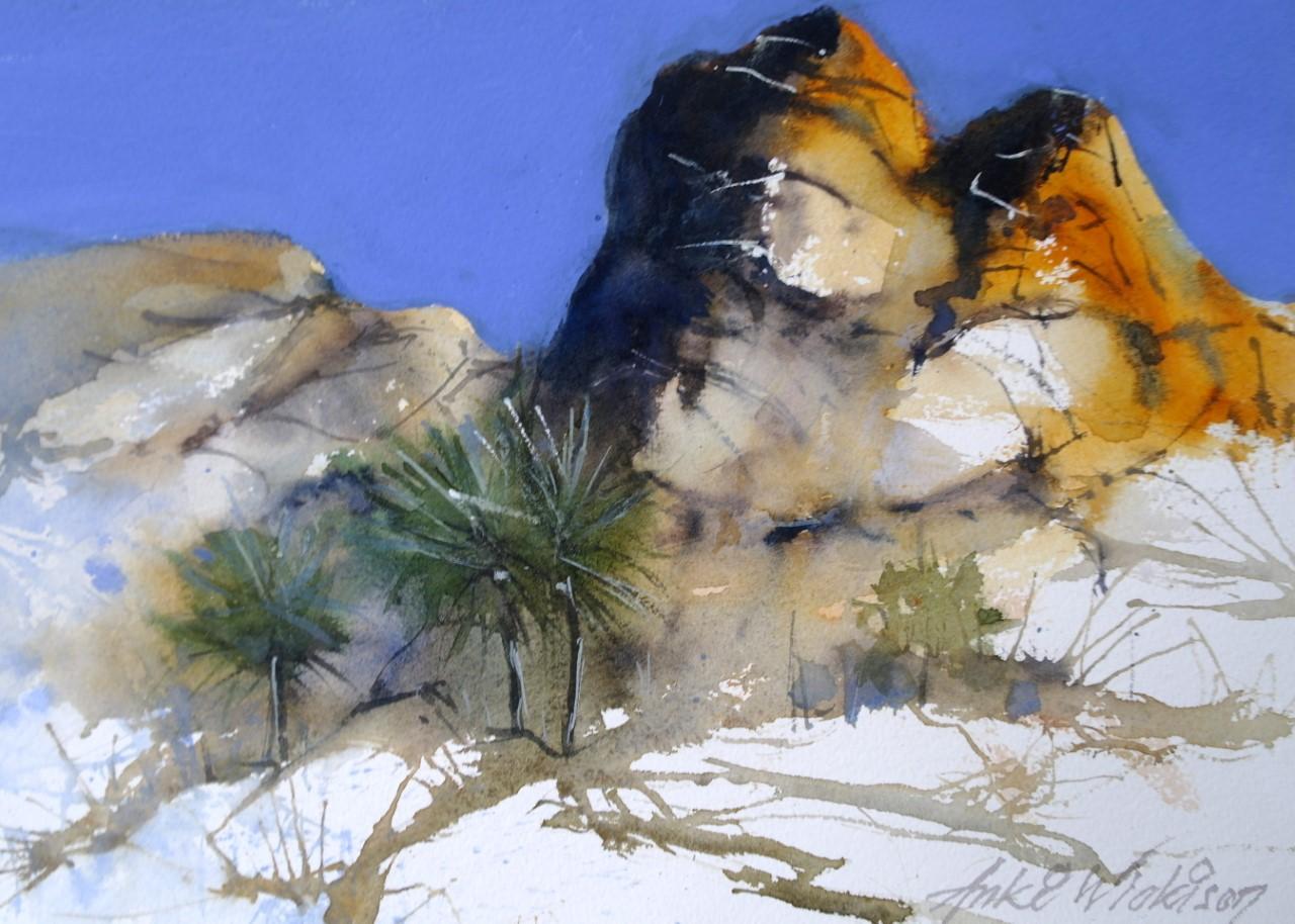 Anki Wickison - Desert