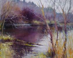 Barbara Benedetti Newton - Golden Gardens Pond.jpg