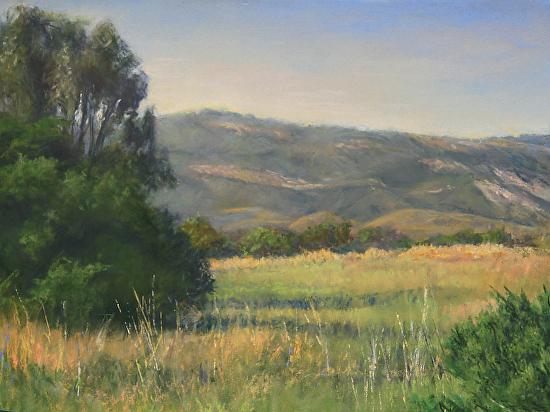 Terri Taber - Wide Open Field