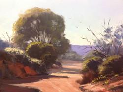 John Rice - Red Sand Creek Bed, Broken Hill