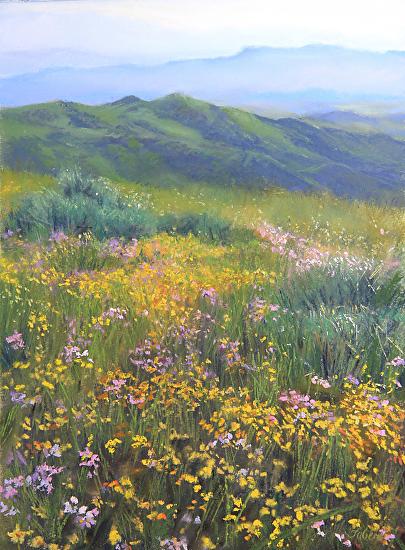 Terri Taber - The Long View, Figueroa Mountain