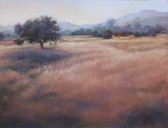 Terri Taber - Pleasing Pasture