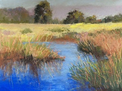 Jacquelyn Blue - Afternoon Reflections