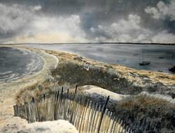 Liz McGee - Walking the Point
