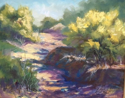 Louise Sackett - Palo Verde Path