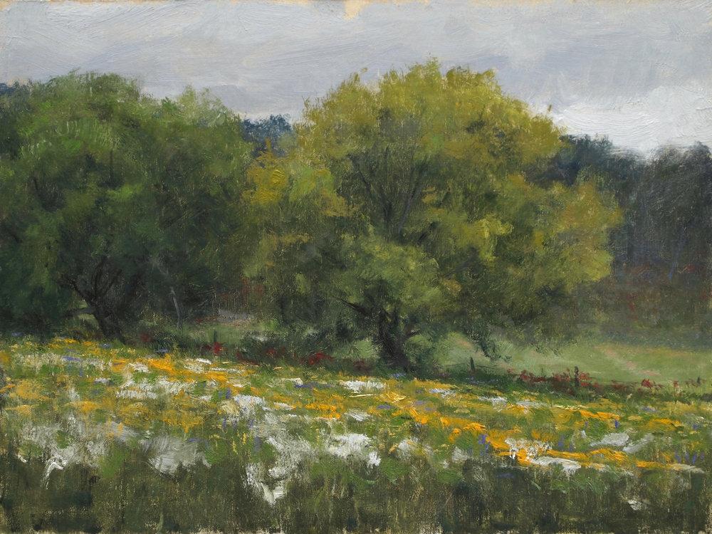 Joshua Cunningham - Early Fall Flowers