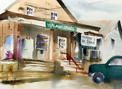Lena Thynell - Pickle's General Store