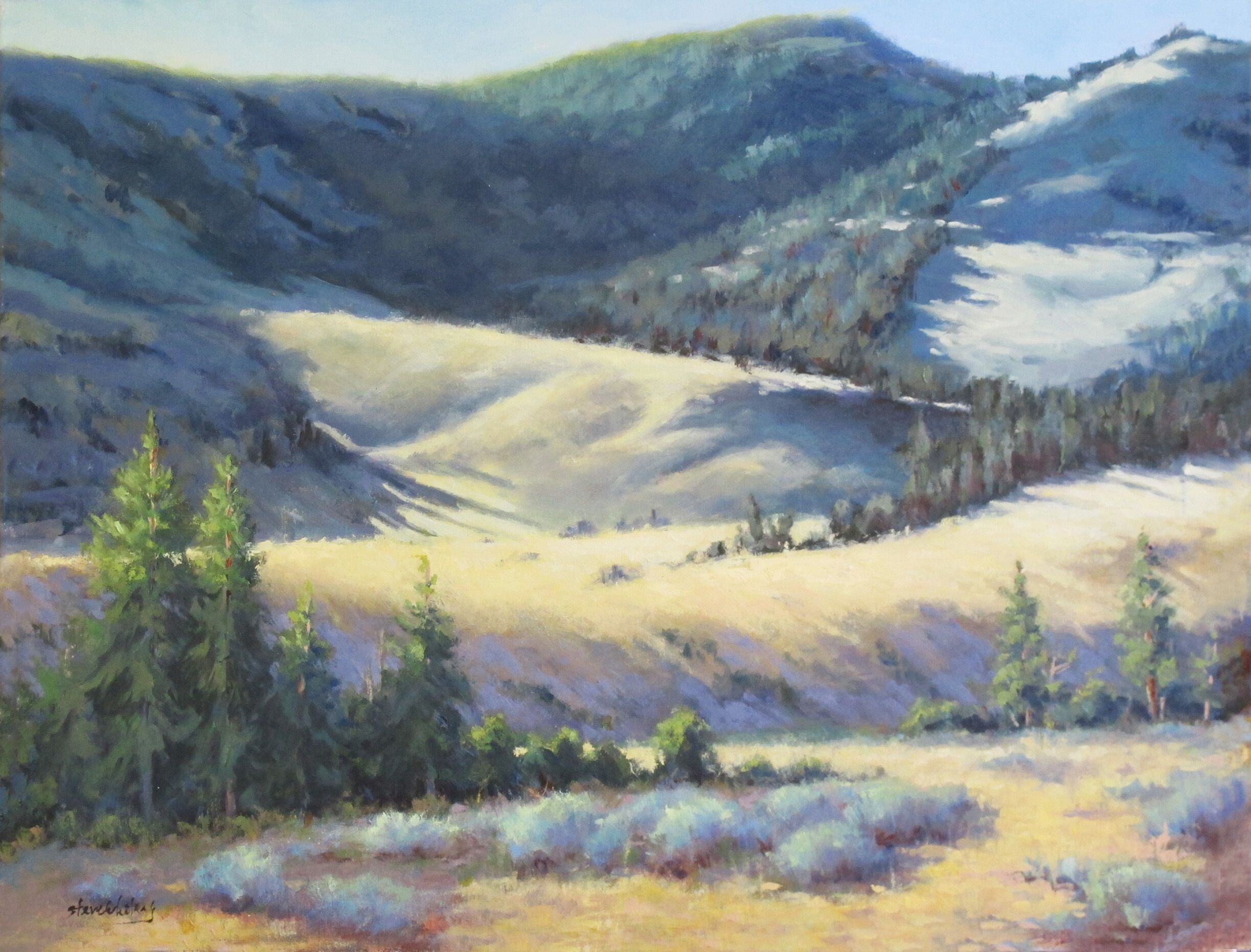 Steve Whitney - Yellowstone Hillside 4