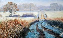 David Barber - Frosty Morning