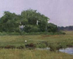 Karen Blackwood - Connecticut Marsh
