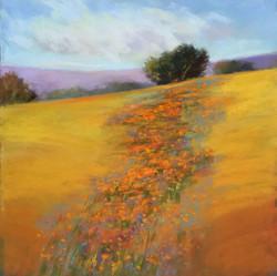 Sherri Cassell - Hillside Flowers