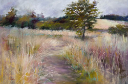 Barbara Benedetti Newton - Grassland Journey II.jpg