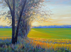 Kathy Mohl - Hushed October