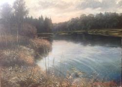 Vadim Cheliaev - Forest Creek