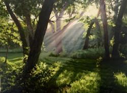John Hulsey - Morning Meadow