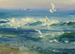 Konstantin Sterkhov - Seagulls