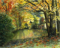 Liz McGee - Jennings Pond