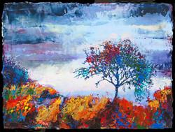 Nancy Overbury - Storm's Edge